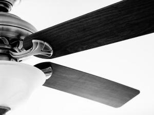 Photo of a ceiling fan by Steve A Johnson via Flickr